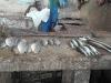 Banjul pescivendolo